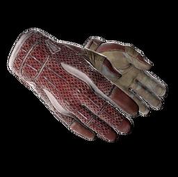 ★ Sport Gloves | Slingshot (Field-Tested)