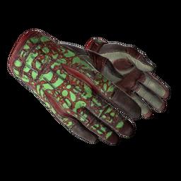★ Sport Gloves | Bronze Morph (Field-Tested)