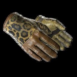 ★ Driver Gloves | Queen Jaguar (Field-Tested)