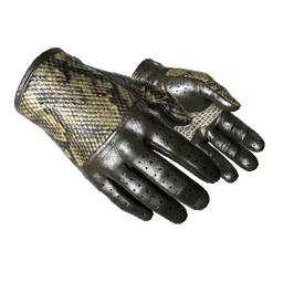 ★ Driver Gloves | Diamondback (Factory New)