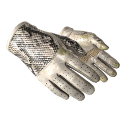★ Driver Gloves | King Snake (Field-Tested)