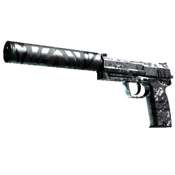 StatTrak™ USP-S | Dark Water (Field-Tested)