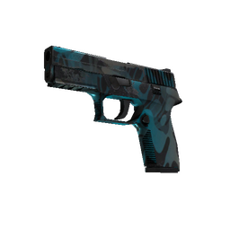 P250 | Ripple (Well-Worn)