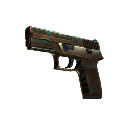StatTrak™ P250 | Verdigris (Well-Worn)