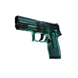 StatTrak™ P250 | X-Ray (Field-Tested)