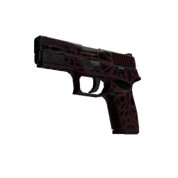 StatTrak™ P250 | Contaminant (Well-Worn)
