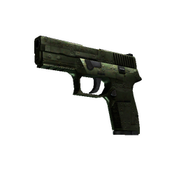StatTrak™ P250 | Iron Clad (Field-Tested)