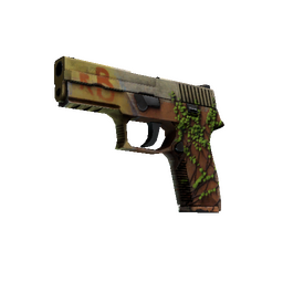 StatTrak™ P250 | Inferno (Well-Worn)