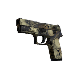 P250 | Contamination (Well-Worn)