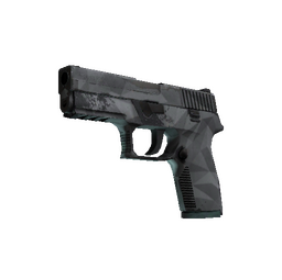 P250 | Facets (Well-Worn)
