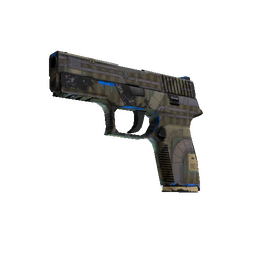 Souvenir P250 | Exchanger (Field-Tested)