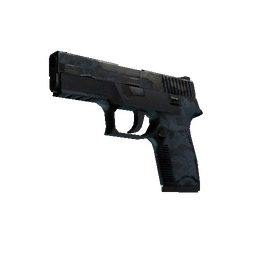 P250 | Forest Night (Battle-Scarred)