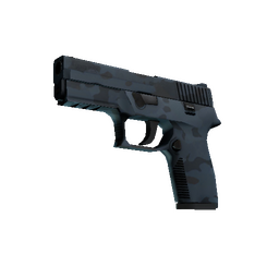 P250 | Forest Night (Factory New)