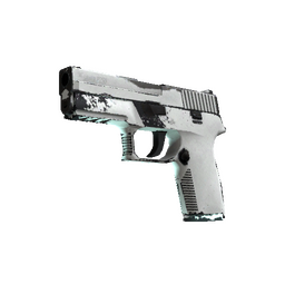 P250 | Whiteout (Field-Tested)