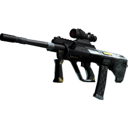 StatTrak™ AUG | Tom Cat (Well-Worn)