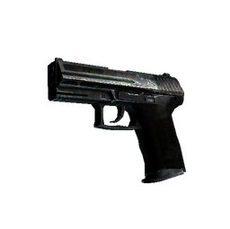 P2000 | Panther Camo (Well-Worn)
