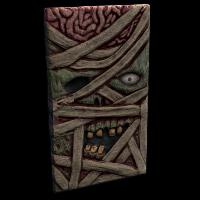Mummy Door Rust Skin