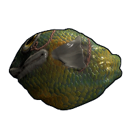 Fish Rock