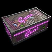 Neon Gun Storage