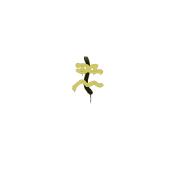 Sealed Graffiti | Recoil XM1014 (Tracer Yellow)